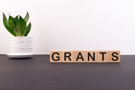 Local Authority Grant Funding and Timescales