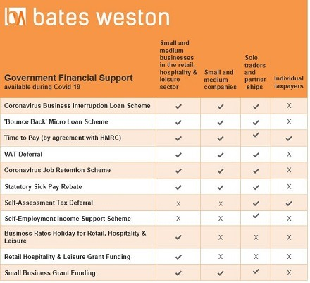 Available Government Support in a table from Bates Weston